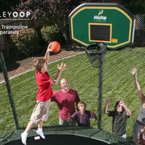Proflex basketball hoop 1