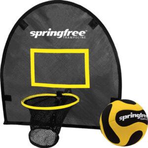 Springfree Flexr Hoop